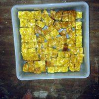 Solar Cooking Philippines